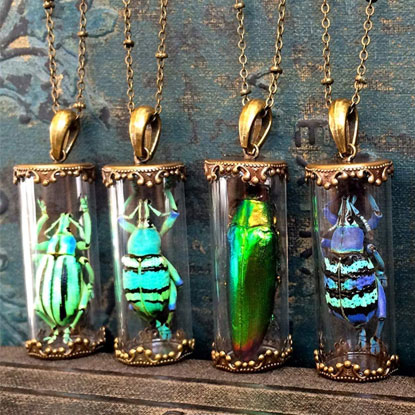 insect necklaces