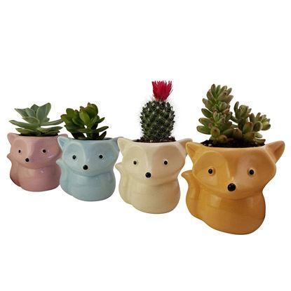 cute fox pots