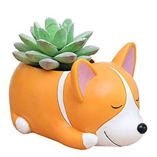 white elephant gift dog pot