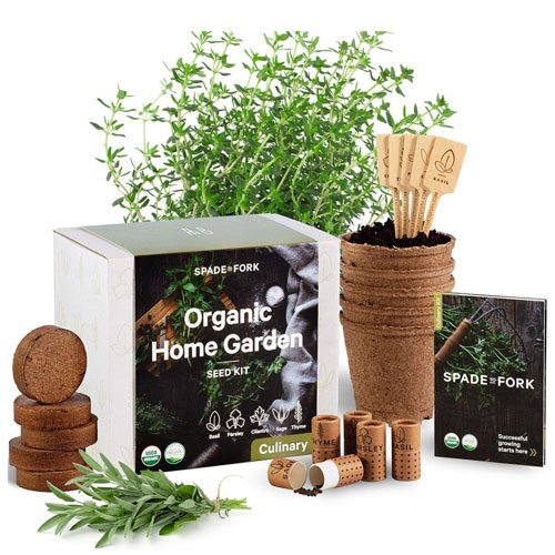 herb garden starter kit  60th Birthday Gift Ideas
