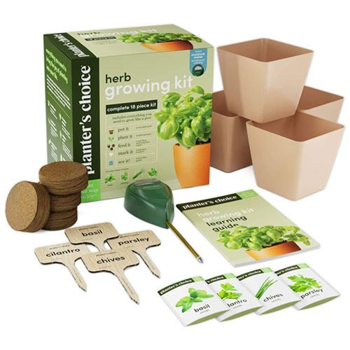 herb growing kit gift