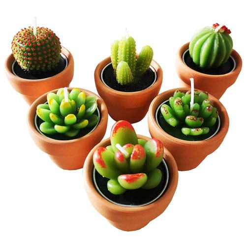 cactus tealight candles