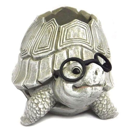 plant pot turtle