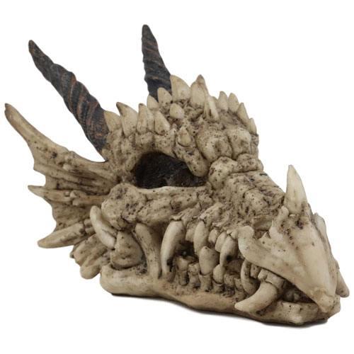 dragon head skull