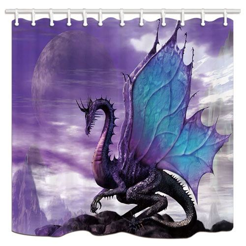 dragon shower curtain