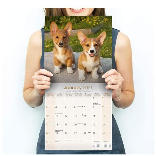 corgi calendar 2021