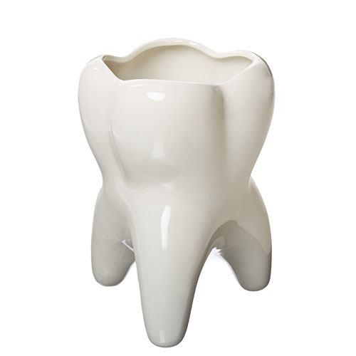 molar tooth vase