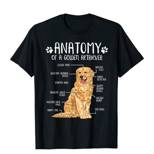 golden retriever anatomy t-shirt